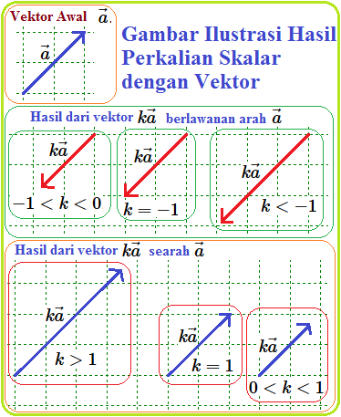 Hasil Perkalian : hasil, perkalian, Perkalian, Vektor, Dengan, Skalar, Konsep, Matematika, (KoMa)