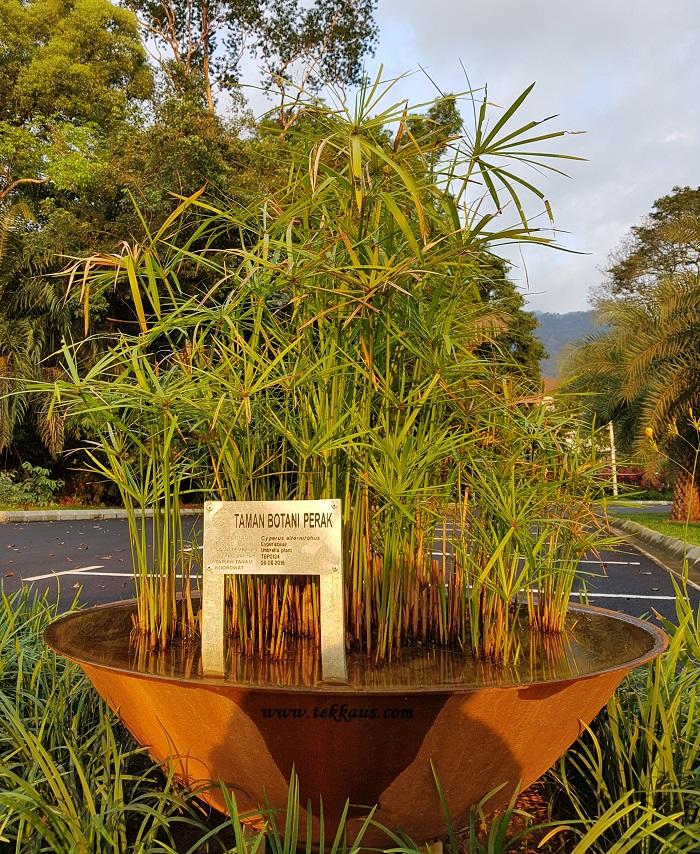 Perak Botanical Garden Taiping Education Center
