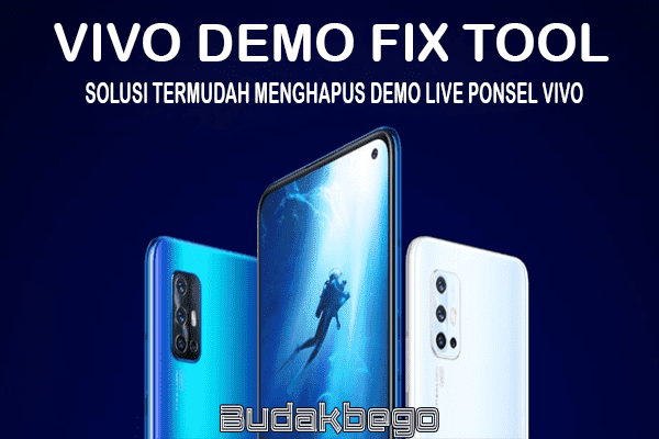 VIVO Demo Fix Tool