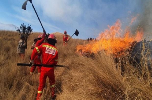 Cusco: incendio forestal destruye al menos 810 hectáreas de cobertura natural