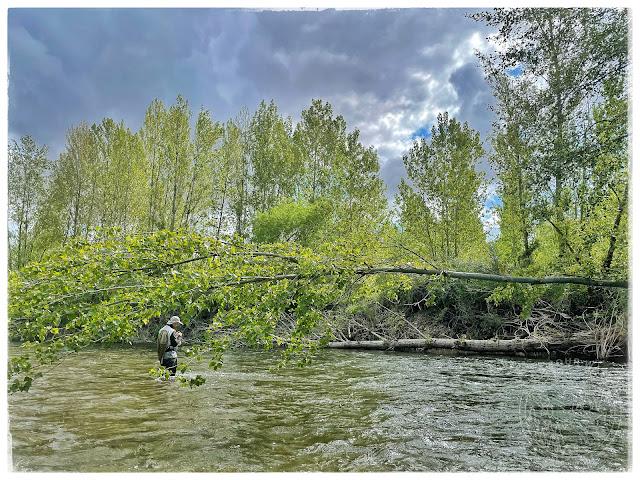IMG 1151 - Dos jornadas, mismo río. Parte 2