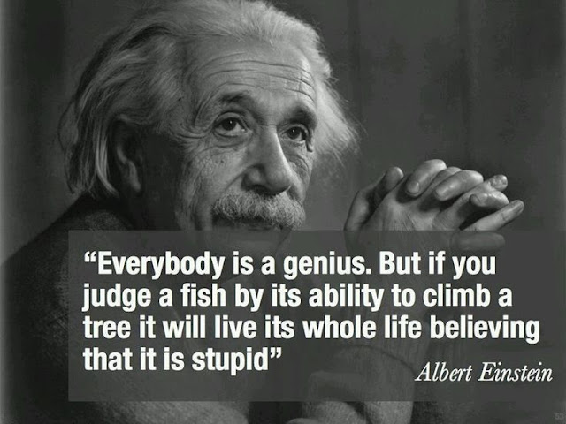Albert Einstein Quotes Motivational Quote Frugal Entrepreneur Business Startup Success Career