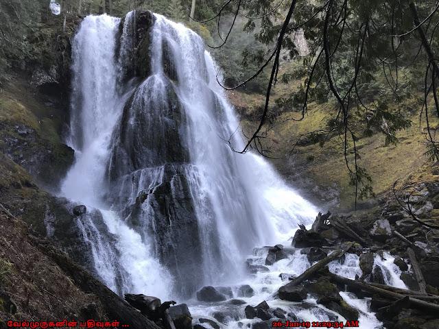 Washington Upper Falls Creek Falls