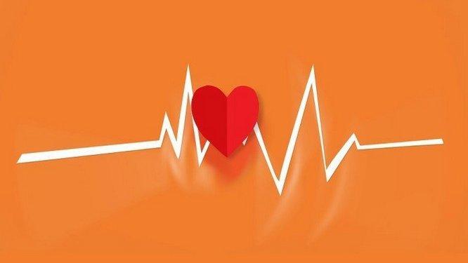 Munculnya duduk kasus yang sangat serius yaitu penyakit jantung dan stroke Tumbuhan Berkhasiat  21 Tips Penting Agar Jantung Selalu Sehat