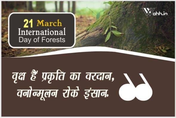 International Day of Forests  Status Hindi