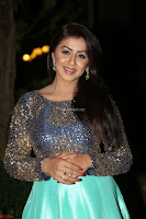 Nikki Galrani in Green Skirt  Top at Marakathamani music launch ~  Exclusive (88).JPG