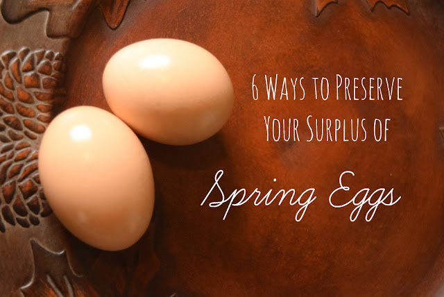 If you have chickens, you probably have an overabundance of eggs in spring. Here are 6 ways to preserve a surplus of fresh eggs.