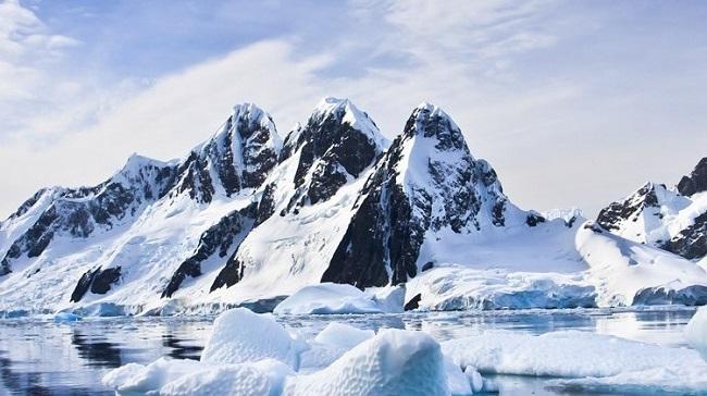 Ártico/Reprodução