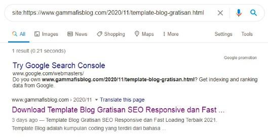 Cara Mengetahui Artikel Sudah Terindex Di Google Atau Belum