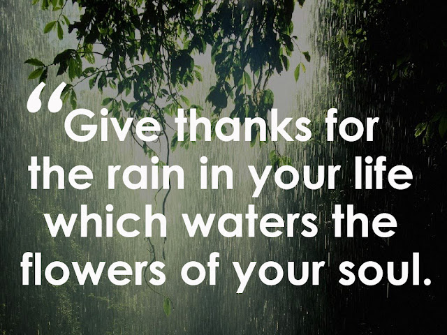 Give thanks for the rain in your life which waters the flowers of your soul.