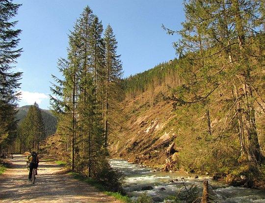 Węższy odcinek Doliny Chochołowskiej. Z prawej widoczne zniszczenia lasu.