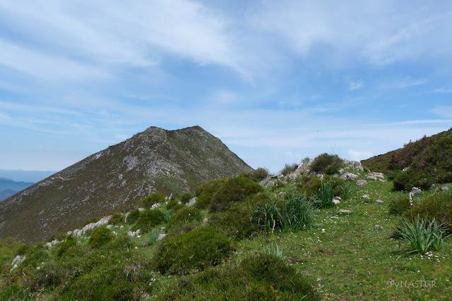 Pico Vízcares - Sierra de Las Aves - Piloña