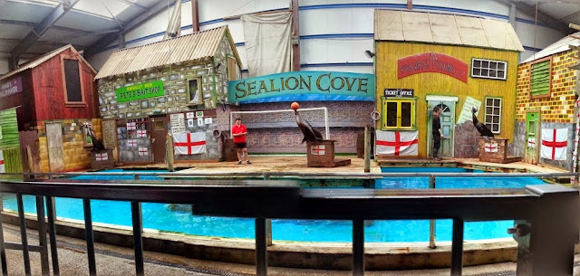 Knowsley Park Sea Lions balancing balls