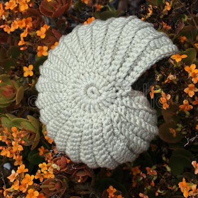 Caracola crochet