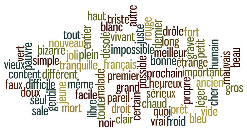 Adjectifs en u