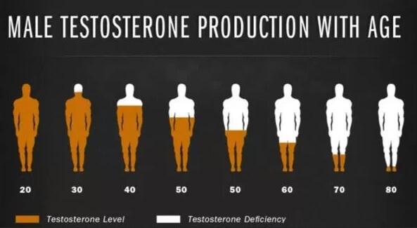 Tahap Testosteron
