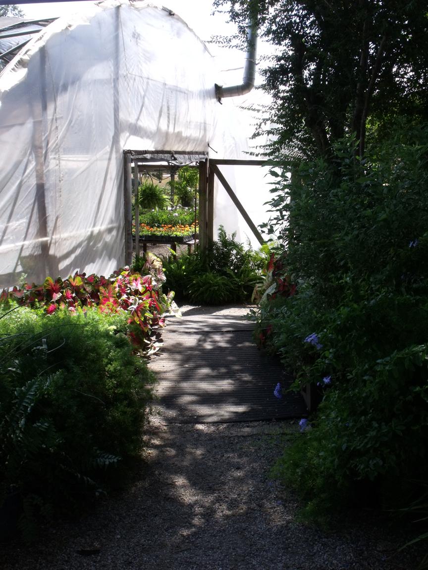 Mod Vintage Life The Greenhouse Nursery