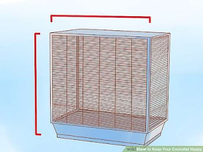 There are many types of cables that you can use with the most popular creatures Guide to Installing a Bird Cage