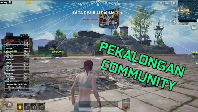 Cheat PUBG Lite PC Hack VIP Pekalongan Anti Banned Terbaru Hack 2021