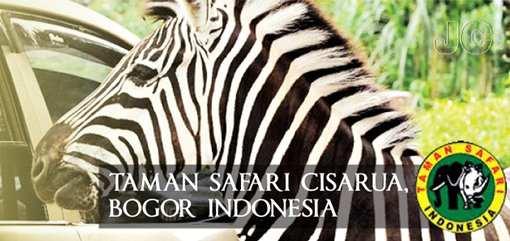 Harga Tiket Masuk Taman Safari Cisarua Bogor Indonesia Terbaru 2016