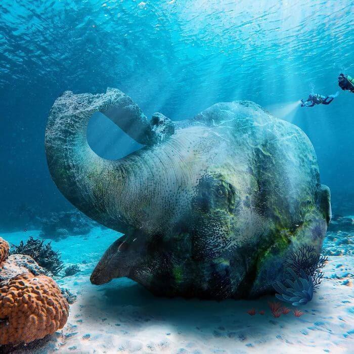 13-Marine-Elephant-Archipelago-Martijn-Schrijver-www-designstack-co