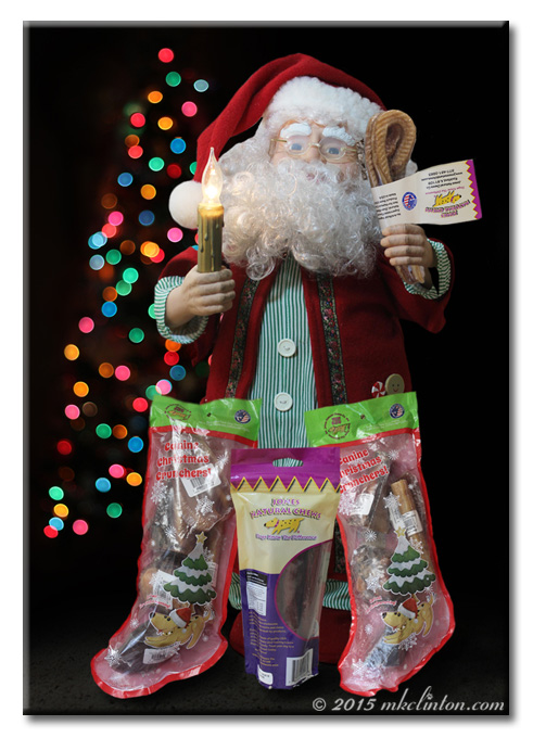 Mechanical Santa with Jones Natural Chews treats