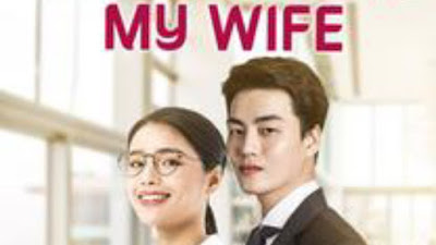Novel my doctor my wife