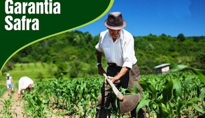 Mais de 76 mil agricultores familiares receberão benefício do Garantia-Safra em março