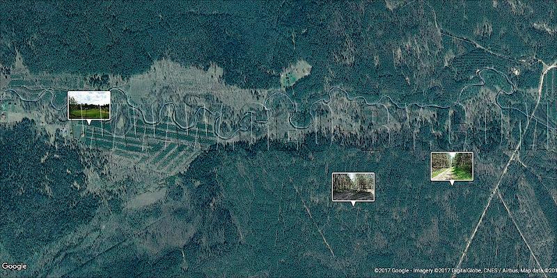 Спутниковая карта Налибокской пущи. Рудня Налибокская. Южная часть