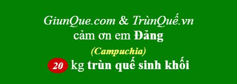 Trùn quế Campuchia