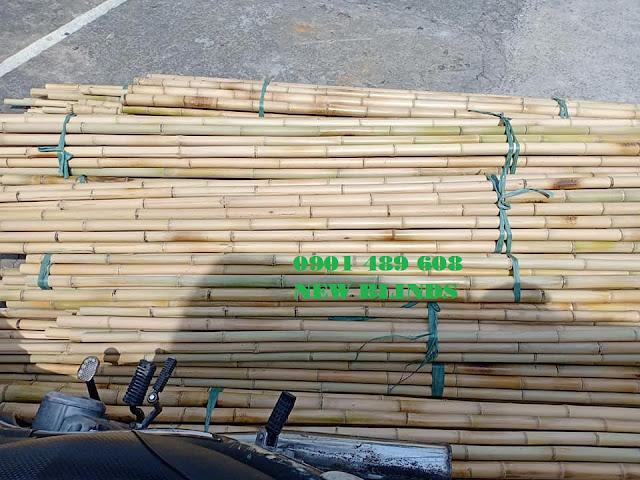 mua cây tre trúc trang trí hcm