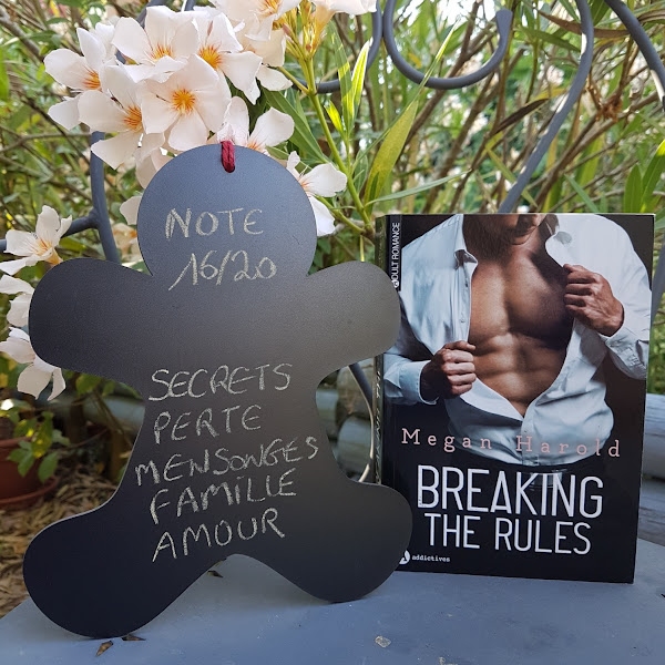Breaking the rules de Megan Harold