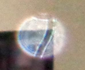 number in orb