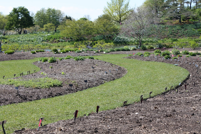 Gardens coming alive in early spring at Chicago Botanic Garden