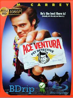 Ace Ventura (1994) BDRip [1080p] Latino [Google Drive] Panchirulo