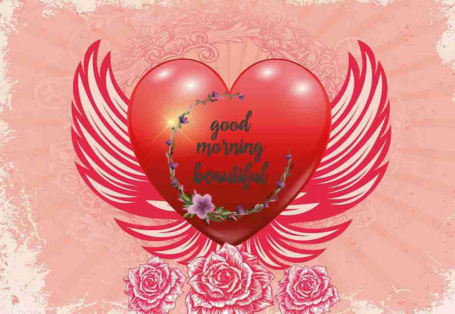 good morning image of heart wings for her