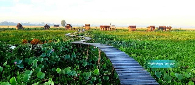 Viet Mekong Farmstay - Mô hình du lịch nông thôn Việt Nam