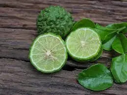 Kaffir Lime: Benefits , Facts , Uses and History -MergeZone
