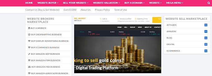 Website Brokers