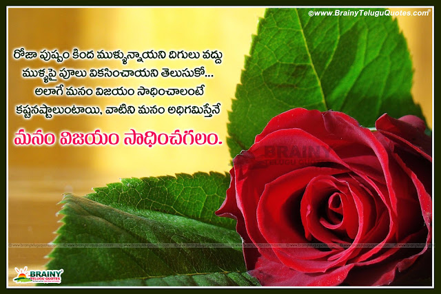 Latest Telugu New Life Inspirational Quotations With Blooming Hd