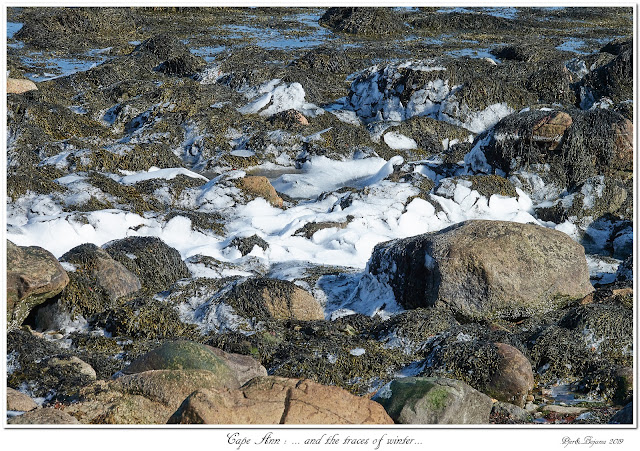 Cape Ann: ... and the traces of winter...