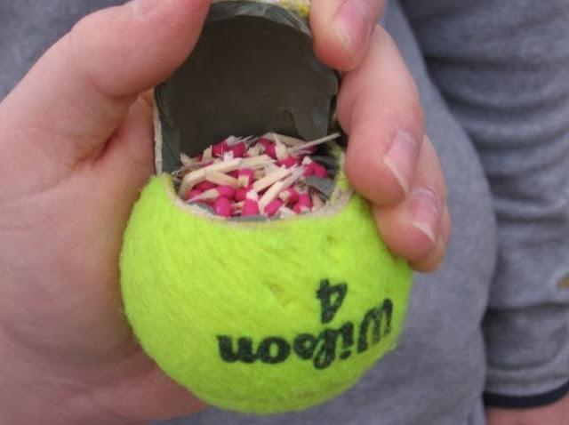 La última y lamentable tendencia: pelotas bomba para perros