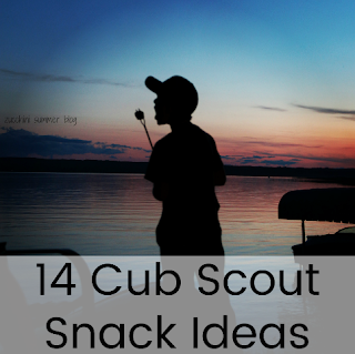 creative snack ideas for tiger scouts, pack meeting snack ideas, dutch oven dump cake, pie iron pizza, campfire snacks, campfire cinnamon rolls
