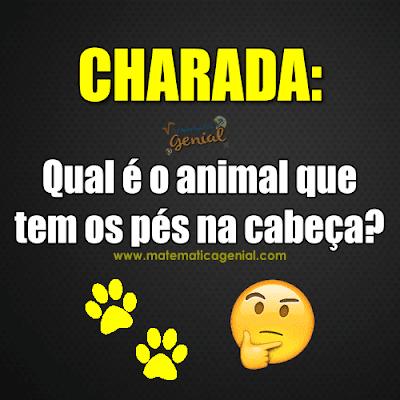 Charada: Qual é o animal que tem os pés na cabeça?