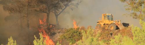 d7c974ce1e Φωτιά ξέσπασε πριν τις 12 το μεσημέρι του Σαββάτου (05 08) στο Ίλιον Αττικής.  Η φωτιά καίει δασική έκταση κοντά σε σπίτια