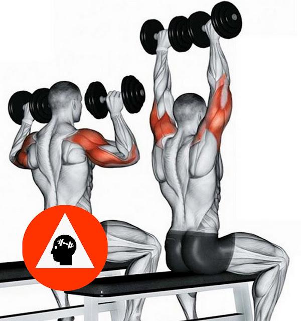 exercice musculation triceps développé militaire haltère