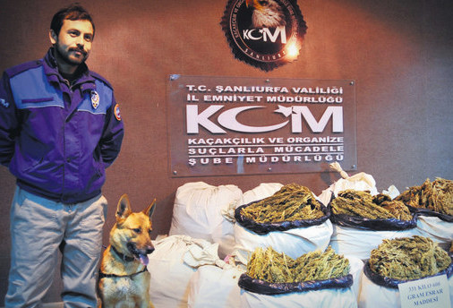 "Image Attribute: Operation ""Hera"" Cannabis Seize /  Source: Yasin Dikmen - Anatolia News Agency"
