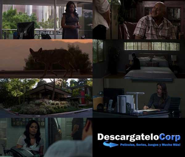 El Tipo Perfecto DVDRip Latino