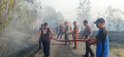Puntung Rokok Menggila, 3 Hektar Kebun Karet Hangus Terbakar