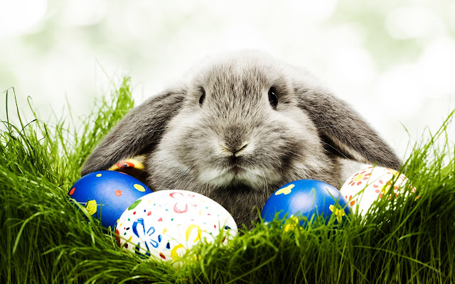 Easter-Wallpapers-Backgrounds